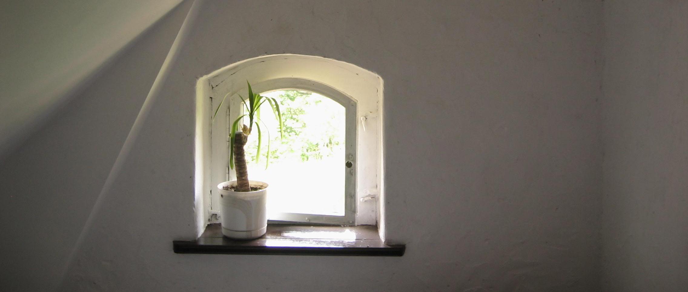 ventana secreta:
